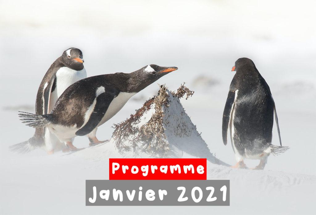 photo mise en avant programme janvier 2021